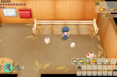 How to get chickens, and look after them, in Story of Seasons: Friends of Mineral Town