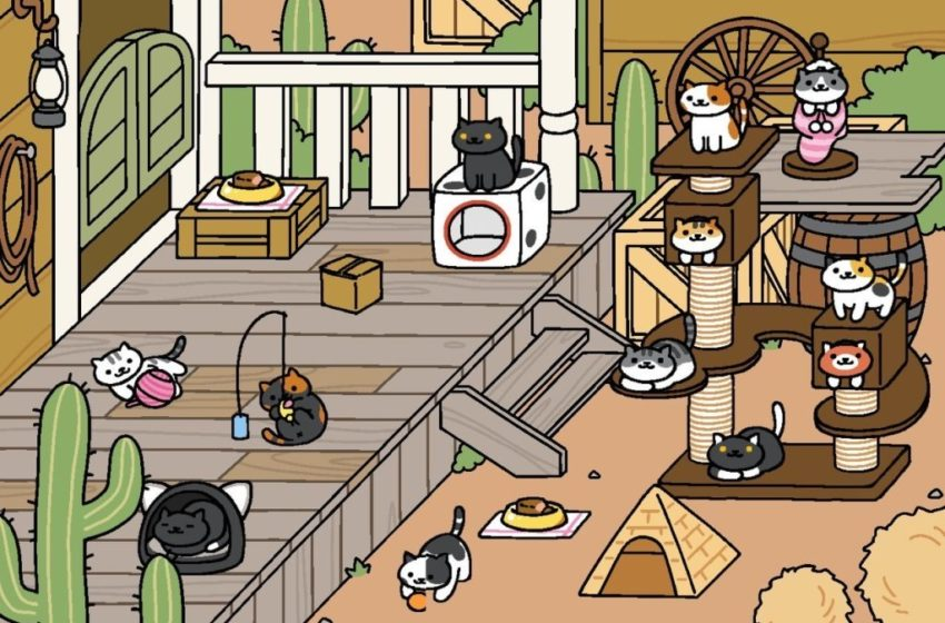 How to get all rare cats in Neko Atsume