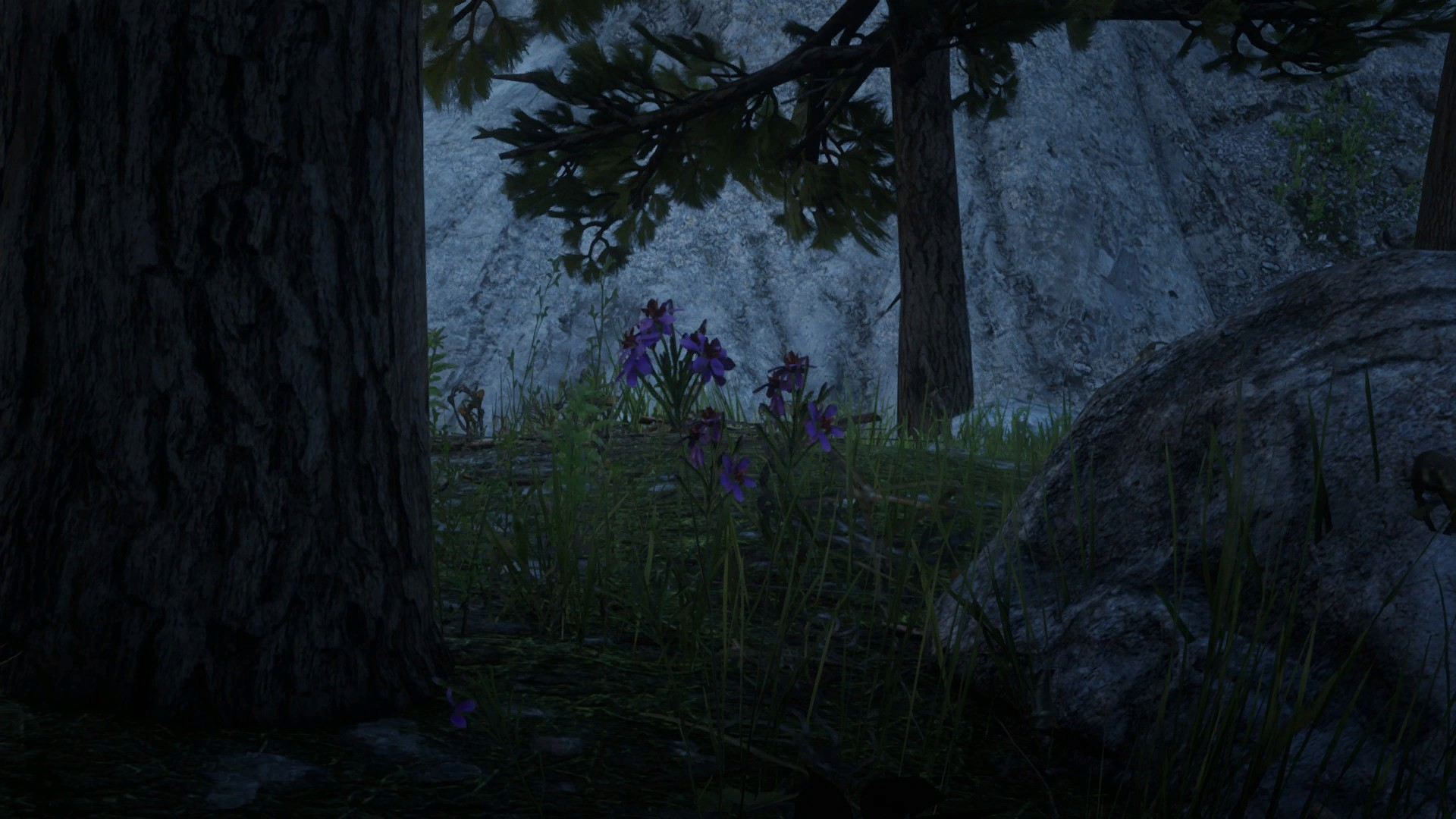 Where to find Harrietum Officinalis in Red Dead Online