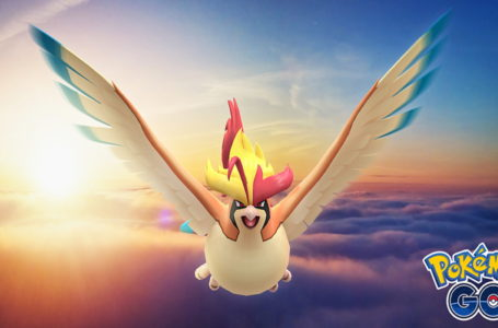 Best movesets for Pidgeot in Pokémon Go