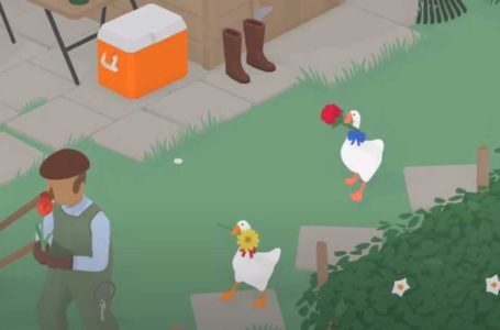 How to play cooperative multiplayer in Untilted Goose Game