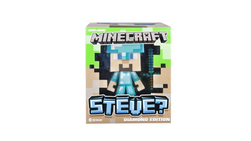 Steve vinyl