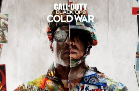Best Controller Settings for Call of Duty: Black Ops Cold War