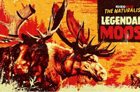 How to find the legendary moose in Red Dead Online