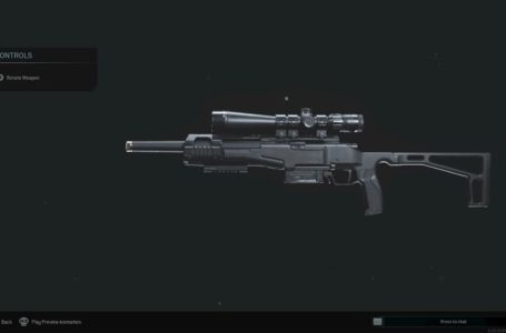 Best SP-R 208 loadouts in Call of Duty: Modern Warfare and Warzone