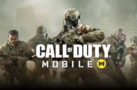 Call of Duty: Mobile generated $480 million player spending in first year after its release