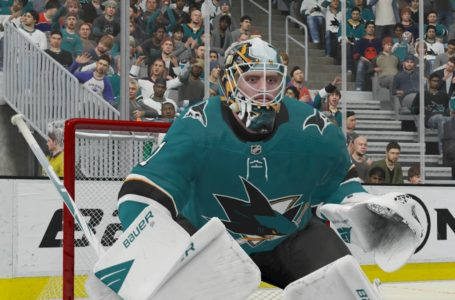 Best World of CHEL and EASHL goalie loadout builds in NHL 21