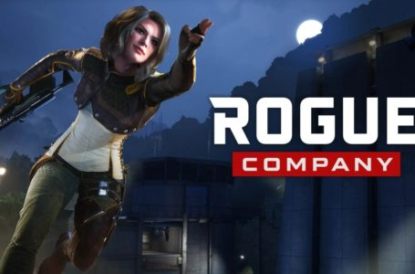 Rogue Company tier list – the best picks for ranked and competitive