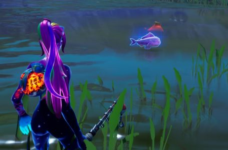 Where to find the Zero Point Fish in Fortnite