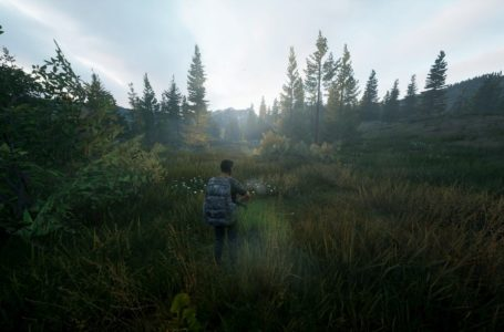 Hunting Simulator 2 comes to PS5/Xbox Series X/S in 2021