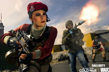 2020's best-selling games, consoles revealed, and once again things look great for CoD