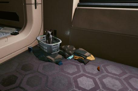 How to get a pet cat in Cyberpunk 2077