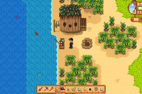 How to complete The Pirate's Wife quest in Stardew Valley – Where to find the keepsake that belonged to Birdie's husband