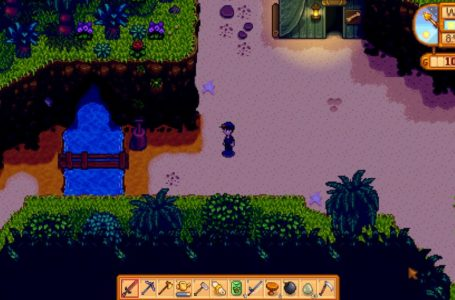 How to complete Professor Snail's museum in Stardew Valley – All museum artifacts