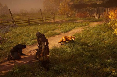 Assassin's Creed Valhalla: How to complete A Dog's Rescue World Event