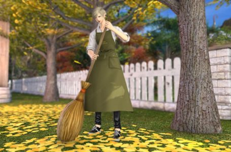 Where to get the broom emote in Final Fantasy XIV