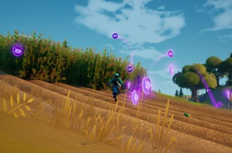 All XP Coin locations Fortnite Chapter 2 Season 5 Week 14 – Green, Blue, Purple, and Gold