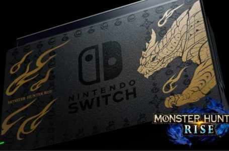 Gorgeous Monster Hunter Rise Switch bundle, Pro Controller to grace Japan's store shelves in March