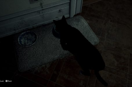 How to unlock the Famished Feline achievement in The Medium