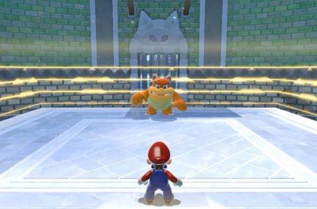 How to get the Clash with Cat Boom Boom Cat Shine in Super Mario 3D World + Bowser's Fury