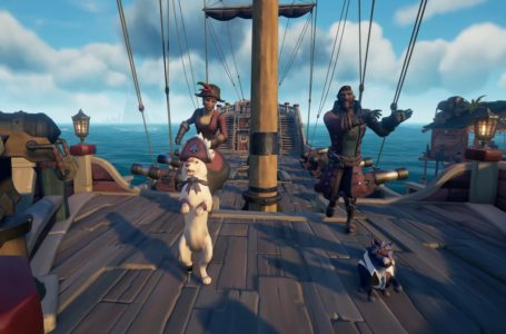 Sea of Thieves February Pirate Emporium update brings new pets equipment and outfits to stoke lovers' fires