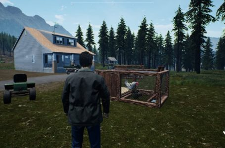 How to feed and water chickens in Ranch Simulator