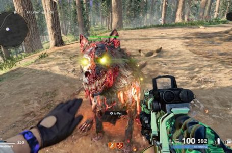 How to pet Hellhounds and Plaguehounds in Call of Duty: Black Ops Cold War Zombies
