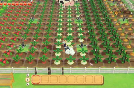 The best and most profitable crops for each season – Story of Seasons: Pioneers of Olive Town