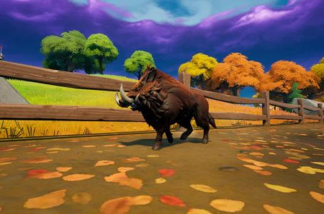 Where to hunt Boars in Fortnite Chapter 2 Season 6