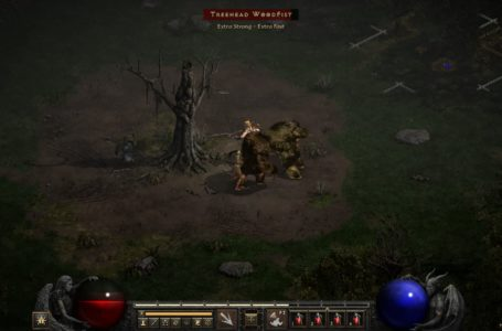 How to find the Tree of Inifuss in Diablo 2: Resurrected