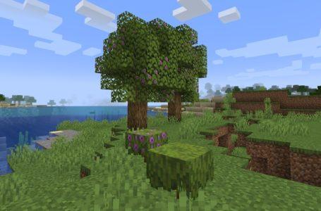 How to grow an Azalea Tree in Minecraft