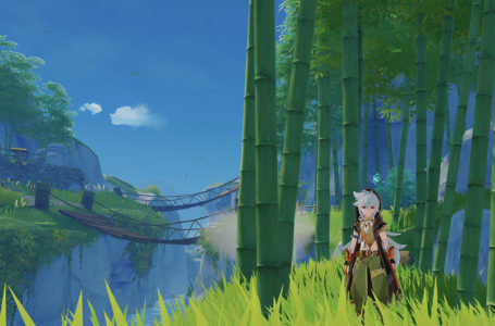 Where to get Bamboo Segment in Genshin Impact