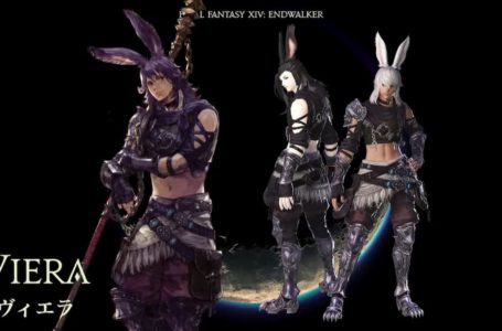 What is the release date for the male Viera race in Final Fantasy XIV?