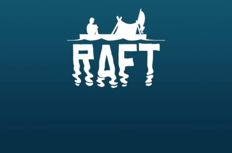 All cheats and commands in Raft