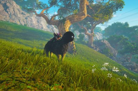 How to get and summon a mount in Biomutant