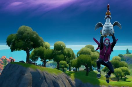 Where to glide 20 meters while holding a chicken in Fortnite Chapter 2 Season 7 – chicken spawn locations
