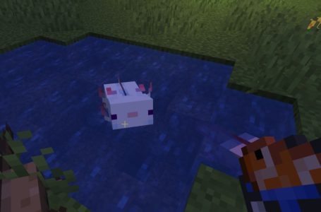 How to breed Axolotls in Minecraft