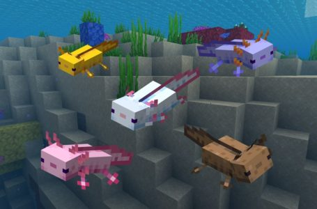 Can Axolotls go on land in Minecraft?