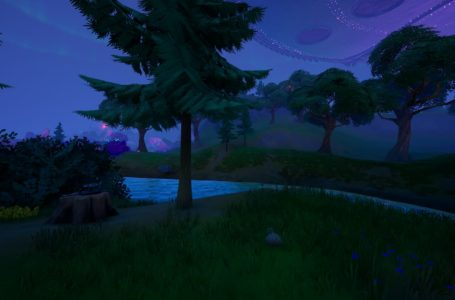 Where to interact with a dead drop in Weeping Woods in Fortnite Chapter 2 Season 7