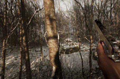 Blue Box's Hasan Kahraman shows face to debunk Hideo Kojima and Silent Hill rumors