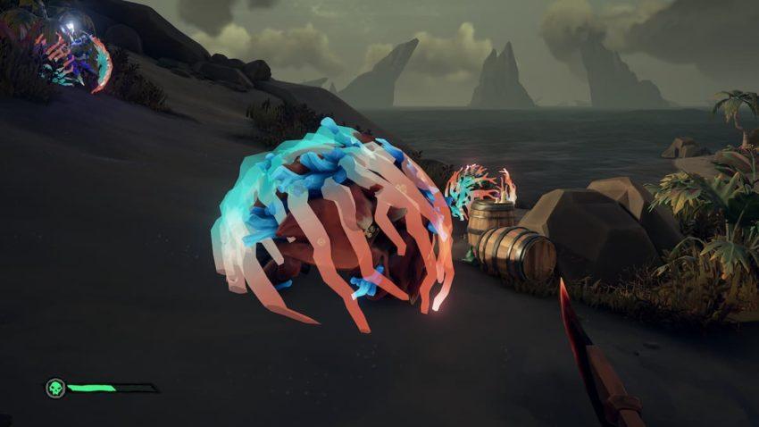 Sea of Thieves Crab Ocean Crawler