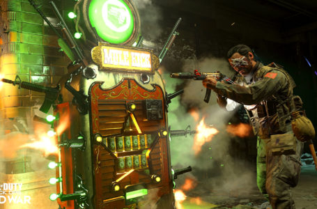Is Mule Kick good in Call of Duty: Black Ops Cold War Zombies?