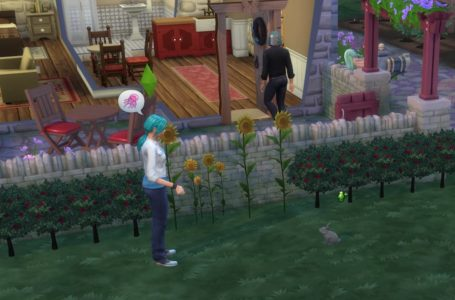 How to befriend rabbits in The Sims 4