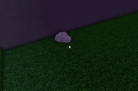 Where to find the Justin ingredient in Roblox Wacky Wizards
