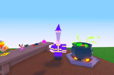 What does the binary code message say in Roblox Wacky Wizards?