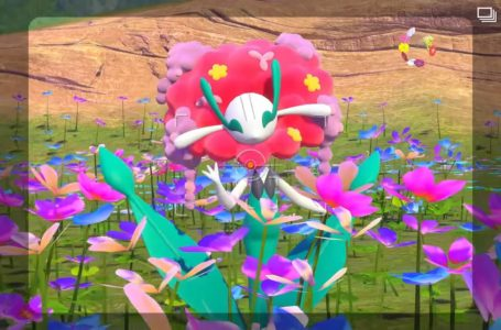 New Pokémon Snap trailer confirms free content update for August, reveals multiple new areas and Pokémon