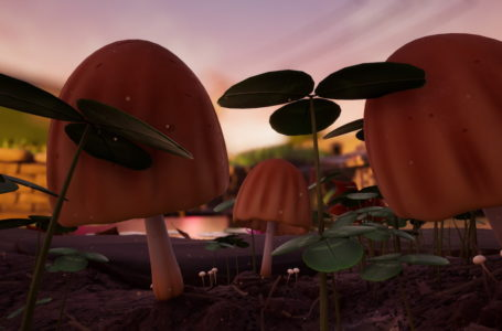 Where to find large mushrooms and get mushroom chunks in Grounded
