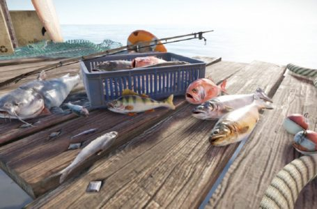 How to fish in Rust