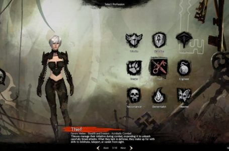 Best Thief build in Guild Wars 2