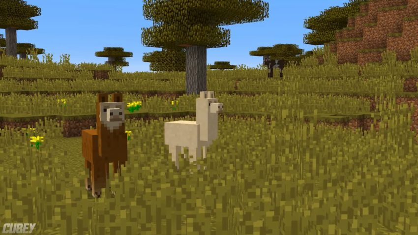 What do llamas eat Minecraft